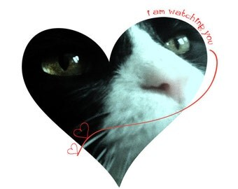 Handmade Card I Love You Cat Heart Large Greeting Card I Am Watching You