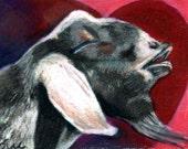 original aceo  art drawing art card  Love a Goat Kisses heart love