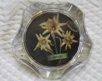 Edelweiss Ashtray . edelweiss .   1960s edelweiss .  Genuine Edelweiss . midcentury modern ashtray . retro ashtray