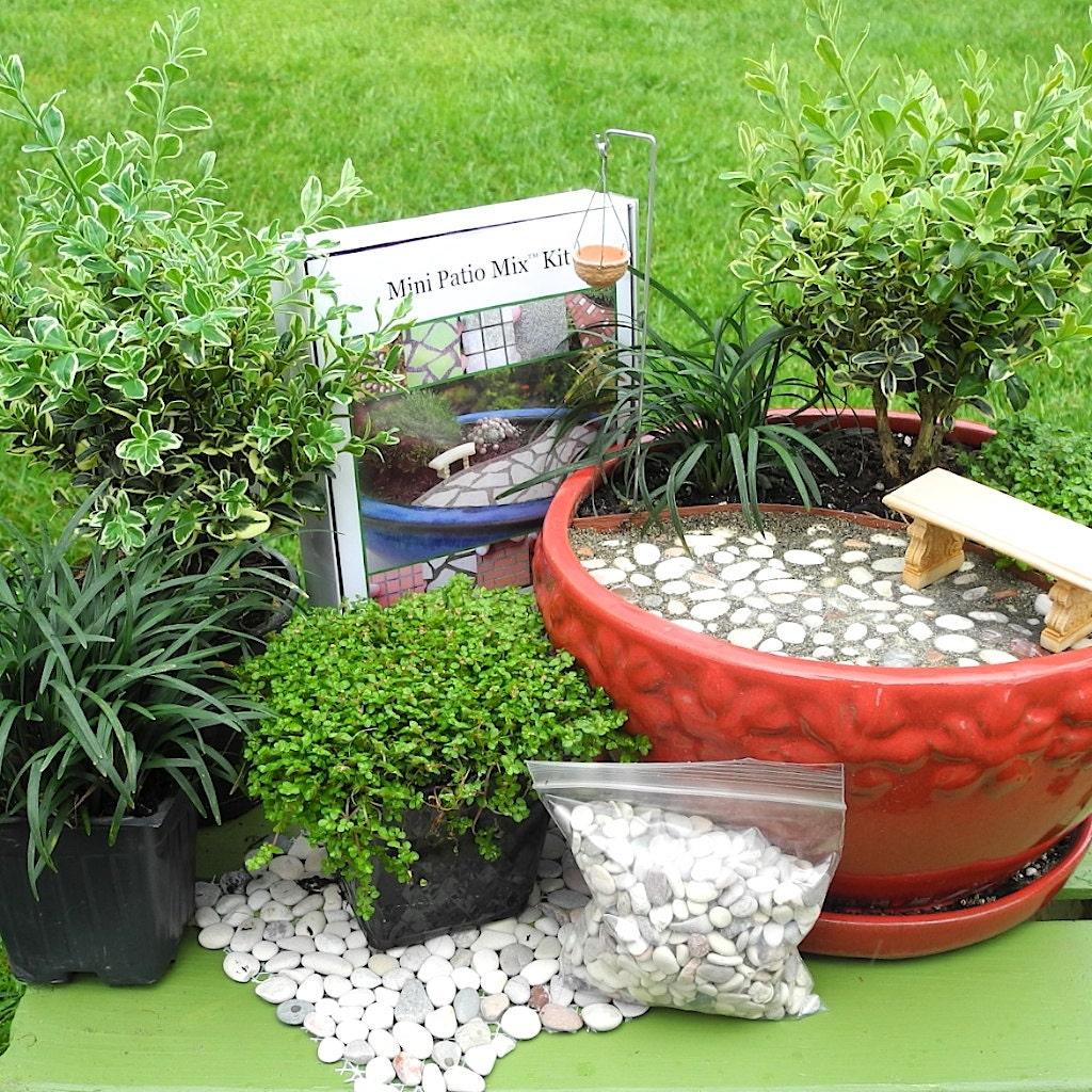 Miniature garden kit for indoors outdoors fairy garden by for Fairy garden kits