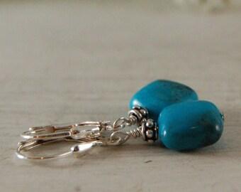 Sleeping Beauty Turquoise Earrings Sterling Silver