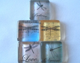 Dragonfly Square Glass Magnets Set of 5