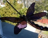 Double Winged Damselfly Dragonfly Amazing Purple Violet  Iridescent Wings