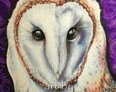 Barn Owl 9 x 12 original pencil drawing on Bristol paper