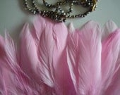 GOOSE FEATHERS  , Baby  Pink  /  456
