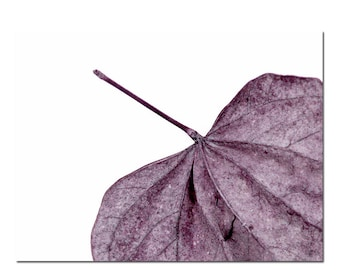 Purple Leaf Abstract Photography Modern Nature Wall Art