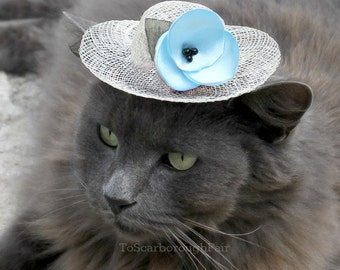 Spring Cat Hat - Elsa Hat for Cat - Winter Kingdom - Aquamarine Blue Flower - Easter Bonnet