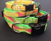 Citrus Slice Dog Collar, Sun kisses orange, lemons and limes adorn on a brite green nylon webbing. Custom pick the perfect width and size.