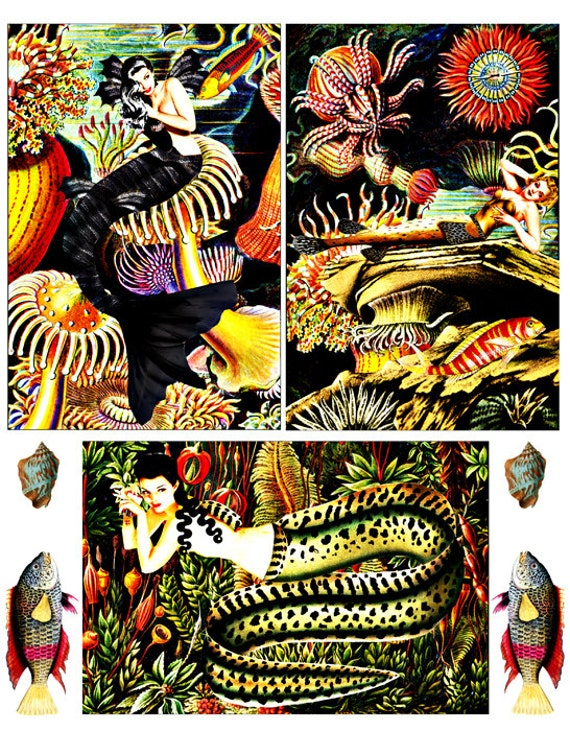 "mermaid art collage sheet 4""x6"" vintage pin up girls pinup girl prints printable art fish sealife coral eel ocean plant life nautical art"