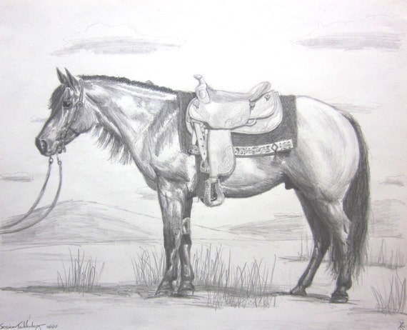 Quarter horse drawing - photo#2