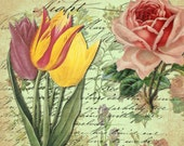 Instant Download Digital Collage SHeet Vintage Flowers Full Page for your Artwork - DigitalPerfection digital collage sheet 665