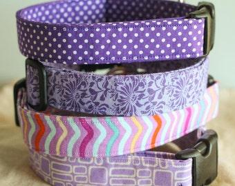 Large Dog Collar - Purple dots chevron floral