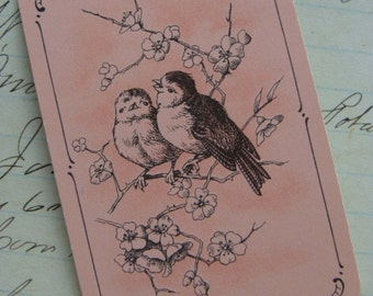 Antique Vintage Pink 4 Beautiful Bird Images for Altered Art