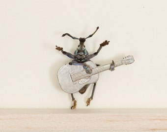 Real Beetle Playing Guitar Insect Art Diorama