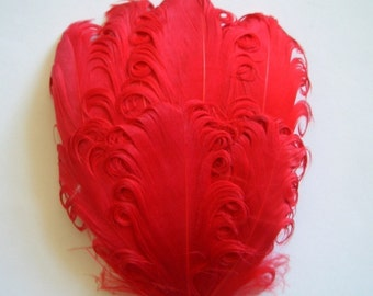 CLEARANCE - Imperfect Red Curled Goose Pads - 3.00 ea