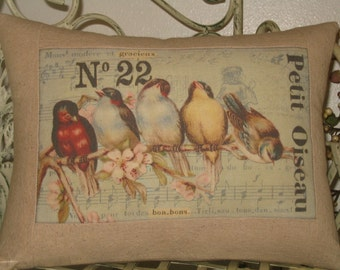 French Bird Throw Pillow Cover,  No 22 Petit Oiseau Rainbow of French Birds