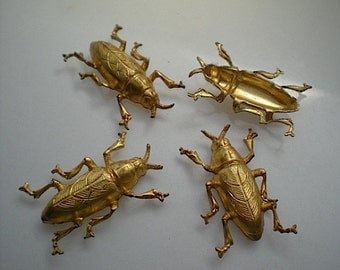 4 brass jewel beetle charms