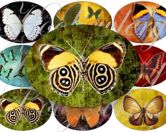 Beautiful butterflies large oval for belt buckle and more digital collage sheet No.1191