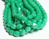 Czech Fire-Polished Glass Faceted Round - 6mm - Opaque Mint Luster - 20 Beads