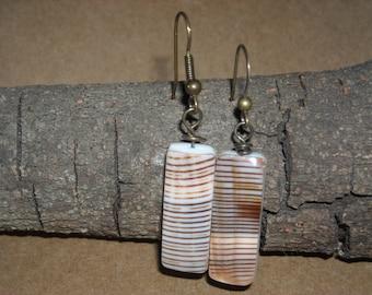 Capsular cone shell earrings