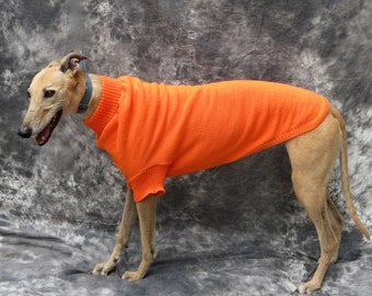 Greyhound Sweater, Medium, Orange