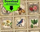 Vintage Garden / Flowers Floral Birds Butterflies Gardening Spring - Printable INSTANT DOWNLOAD 1x1 Inch Squares Digital JPG Collage Sheet