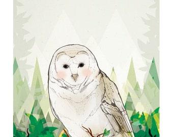 Barn Owl Giclee Unframed A4 Fine Art Print- Gift for Nature Lovers - Bird Lovers - Birthday Present - Wall Art - Home- Owl Art -A4 A3