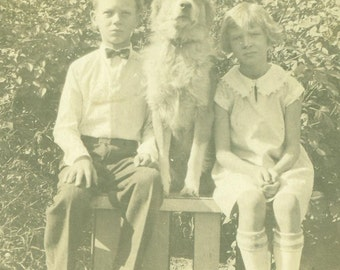 Serious Brother Sister And Their Dog Sitting on A Bench Antique Vintage Photo Black and White Photograph