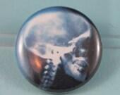 Skull xray pinback button