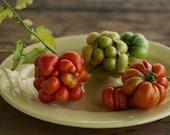 Reisetomate Heirloom Tomato Seeds