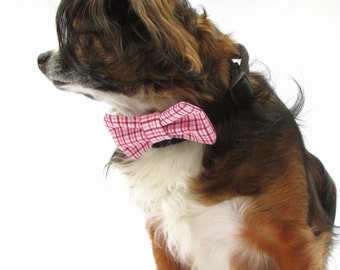 Dog Bow tie-Clip on-Pink and Red and White Plaid-Size small