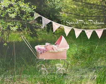 Instant Download Newborn Baby Child Photography Prop Digital Backdrop for Photographers Vintage Pink Carriage