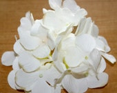 1 Creamy White Hydrangea Bunch - Small Head - Artificial Flowers, Blossoms, Silk Flowers - PRE-ORDER