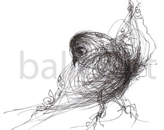 Black bird instinct, black bird prints, ink drawing, art print,  wall art, bird art, prints illustrations, wall decor, interior design