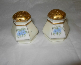 Salt,  Pepper Shaker Set, Hand Painted with Blue Flowers from Austria, Vintage or Antique