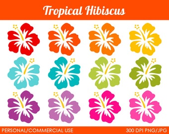 Tropical Hibiscus Clipart - Digital Clip Art Graphics for Personal or Commercial Use