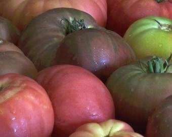Tomato, Organic Tomato Heirloom Blend Mix Seeds - 10 Varieties