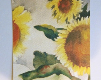 Sunflower II, watercolor print ACEO 766 WatercolorsNmore Art Card 2.5 x 3.5 Fall