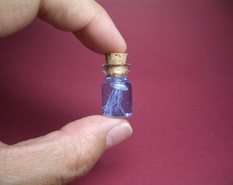 A jellyfish in a tiny bottle XL