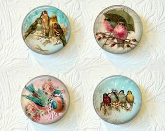 Magnet Set Colorful Birds 1.5 Inch Buy 3 Get 1 Free  220M