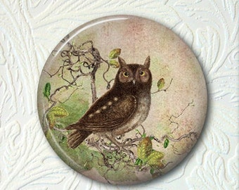 Pocket Mirror  OWL  2.25 Inch - Comes With A Velour Pouch - Buy 3 get 1 Free   014