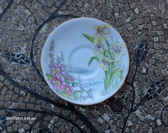 Royal Stafford Wild Flower Series Bone China Saucer - Made in England - Beautiful
