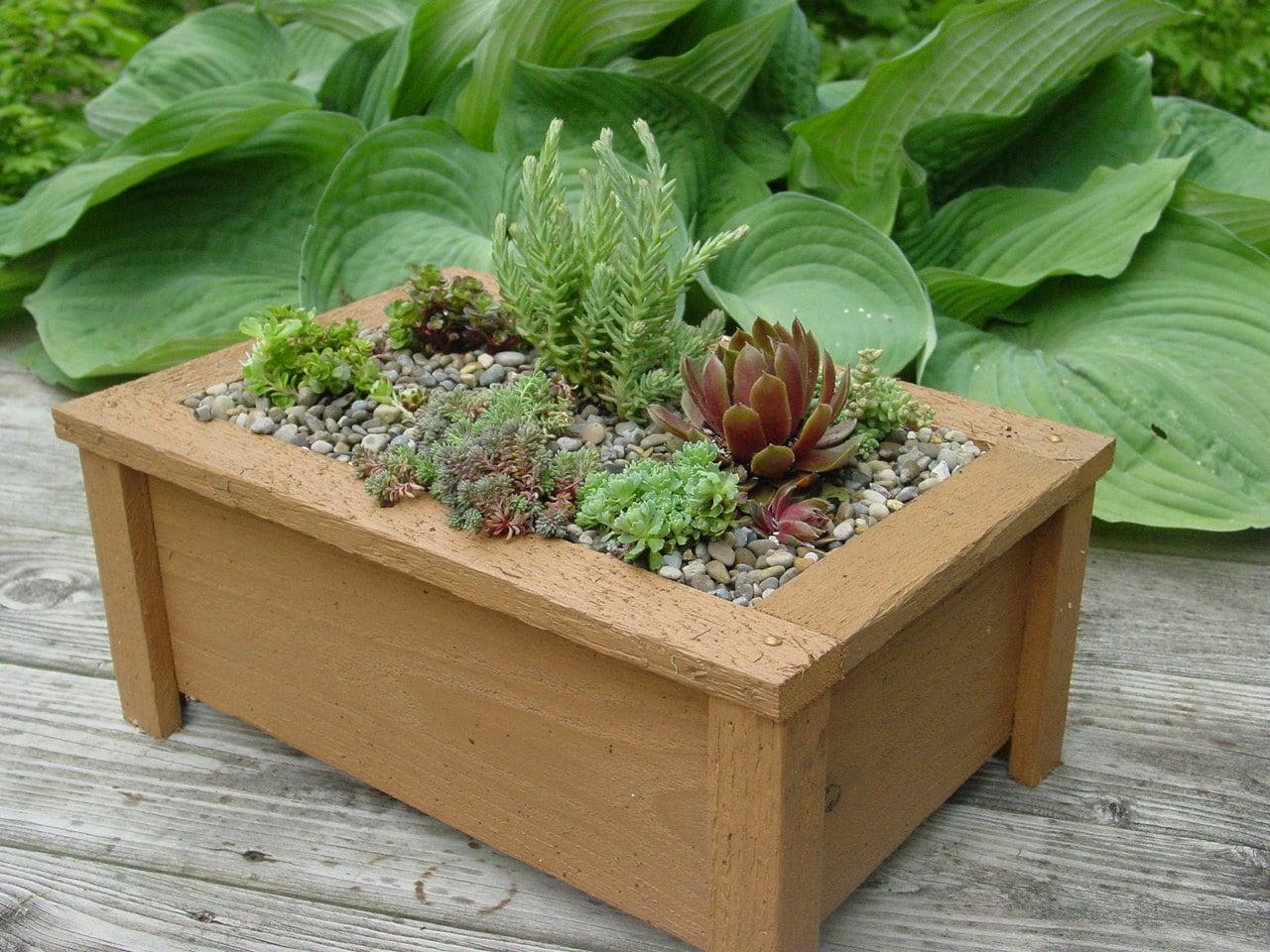 Miniature Garden Fairy Garden Planter Box For Outdoors Or