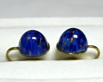Faux Lapis Lazuli Screw back earrings Apparel & Accessories Jewelry Vintage Jewelry Earrings Screw Back Earrings
