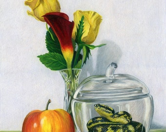 Still Life with Apple Jar- Snake Fine Art Giclee 5x7 matted to 8x10