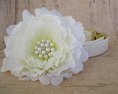 Ivory Satin Dog Collar with Brass Hardware and Large Flower Accessory