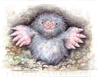 Original ACEO european mole  Original Painting Watercolor Card collectible fine art