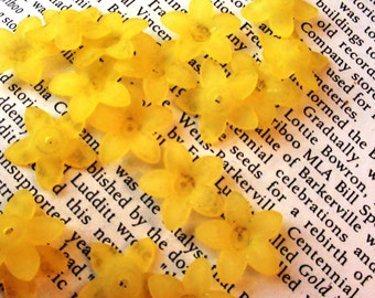 12 pcs Yellow Flower Lucite Frosted Bead Caps 17mm