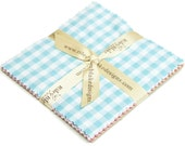 """Gingham Large Gingham 10"""" squares Stacker Bundle by Riley Blake Designs for Riley Blake, 11 pieces"""