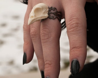 sparrow skull ring - bone white or black